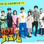 ど根性ガエル|日本テレビ